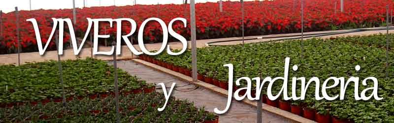 Viveros de valencia viveros semillas raices plantas - Jardineria en valencia ...